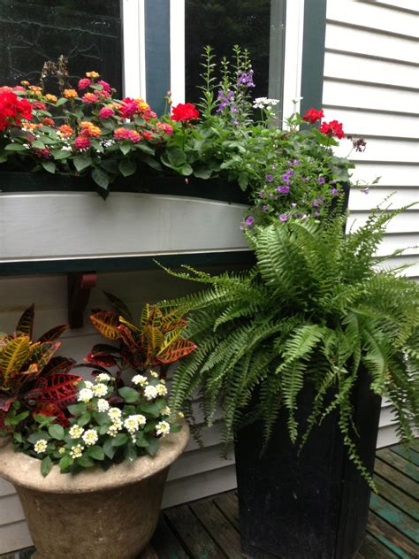 Costa Farms Shares Simple Tips For Decorating Patios