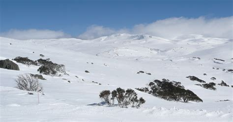 By 2050, Winter Will No Longer Exist in Australia, Say