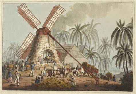 A Short History of Slavery and Sugar Cane in Jamaica