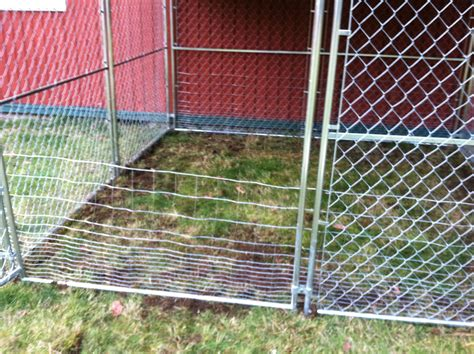 Turning a regular Dog's Kennel into a meat pen for rabbits