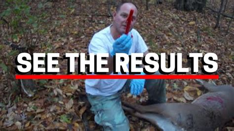 How to Gut a Deer in 5 Minutes - YouTube