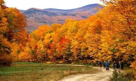 """The """"Best Fall Foliage"""" Award Goes To…   Unofficial Networks"""
